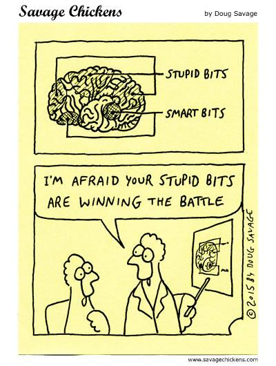 Stupid Bits